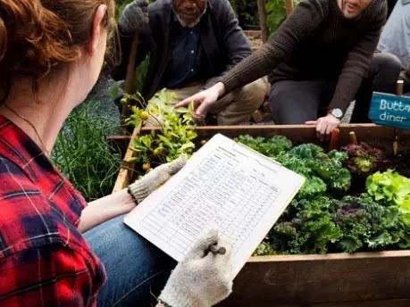 Help Shield Florida's Regular Regions from Non-local Obtrusive Plants1