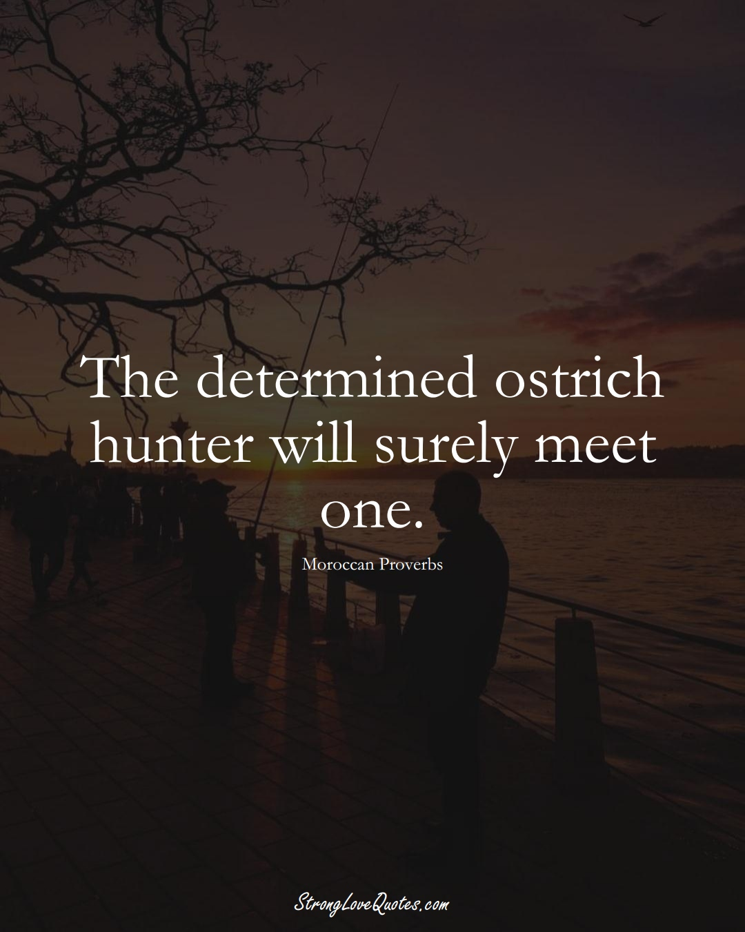 The determined ostrich hunter will surely meet one. (Moroccan Sayings);  #AfricanSayings
