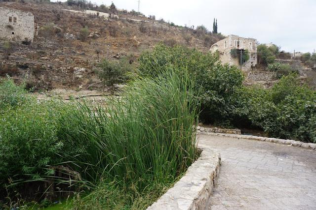 עין ליפתא - ירושלים