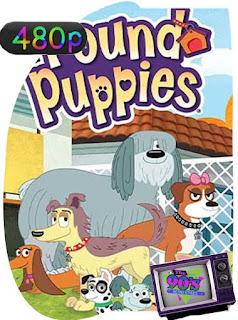 The Pound Puppies [1986] Temporada 1-2 [480p] Latino [GoogleDrive] SilvestreHD