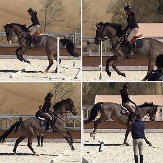 horsexplore, monterosato, jochen allard, rodrigo pessoa, riitta reissaa, riitta kosonen