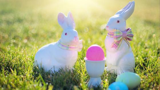 Easter Flash Quiz Answers V1_V2