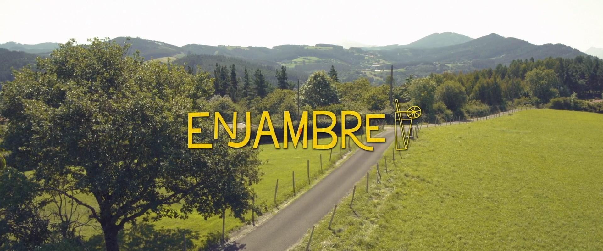 Enjambre (2020) 1080p WEB-DL