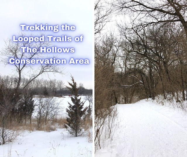 Trekking the Looped Trails of The Hollows Conservation Area in Cary, Illinois