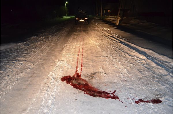 В Дуванском районе под колёса автомобиля попал пешеход
