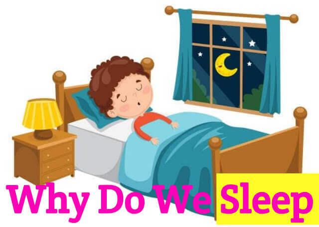 why-do-we-sleep-in-hindi