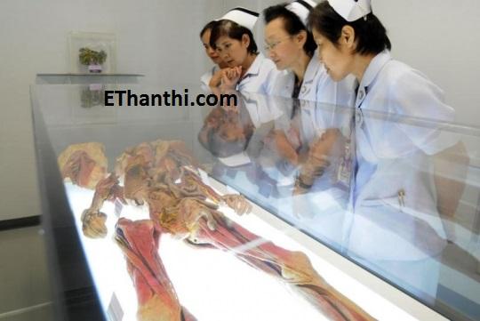 பல விதமான அதிசயம் கொண்ட மனித உடல் !