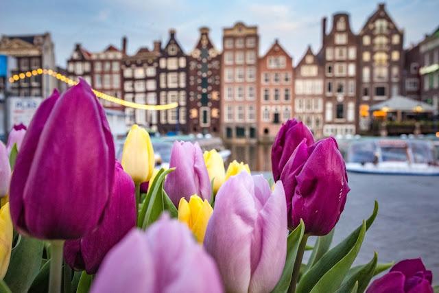tappe imperdibili Amsterdam