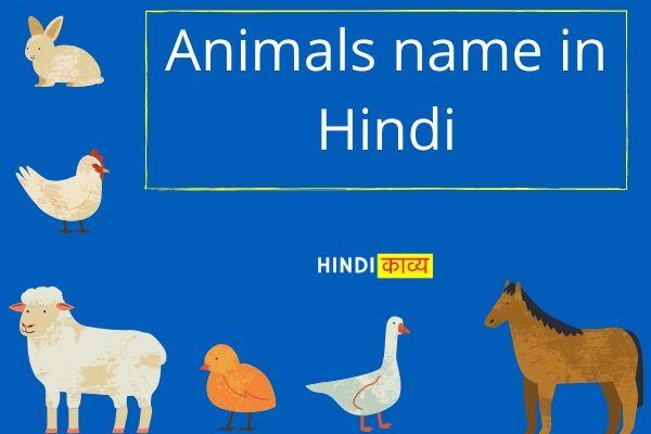 Wild and Domestic Animals name in hindi and english- जानवरों के नाम हिंदी में