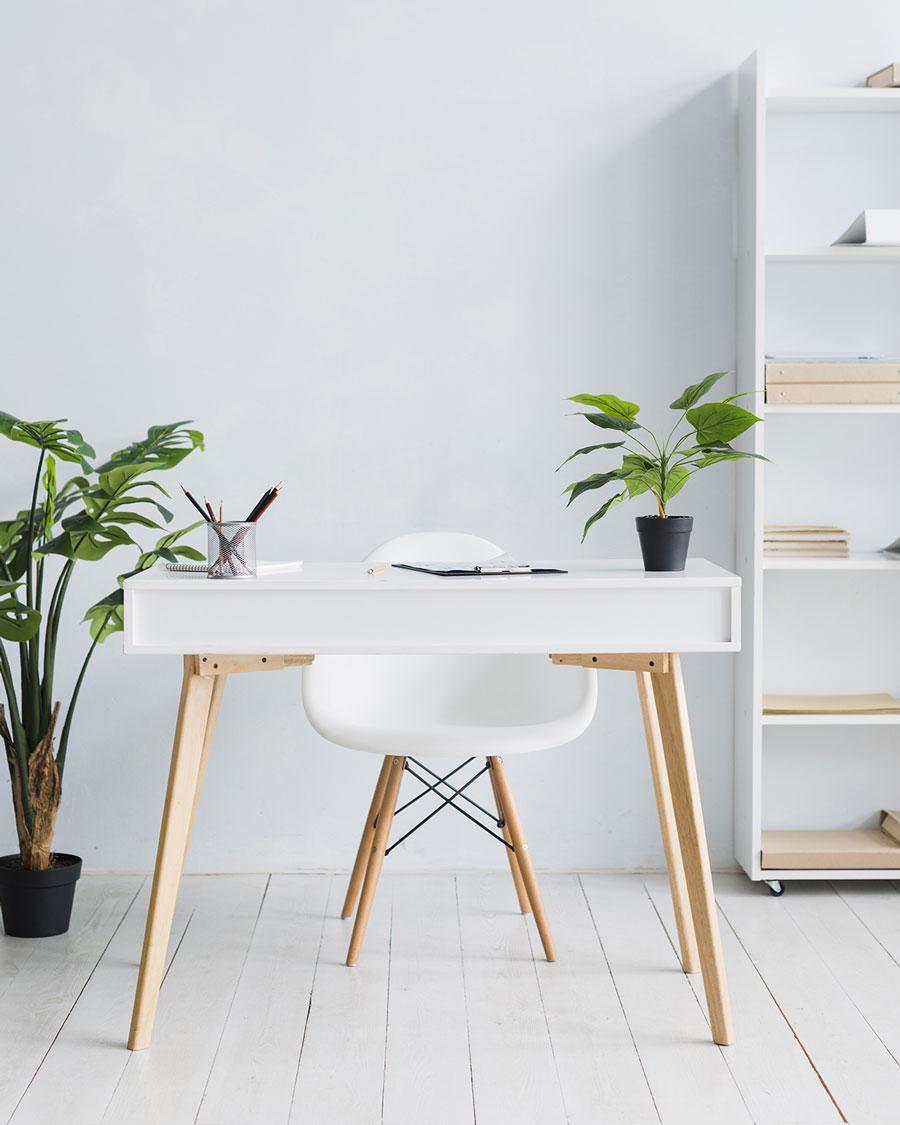 6 Dicas para um Blog Profissional