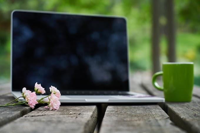 Cómo encontrar un trabajo online que te guste