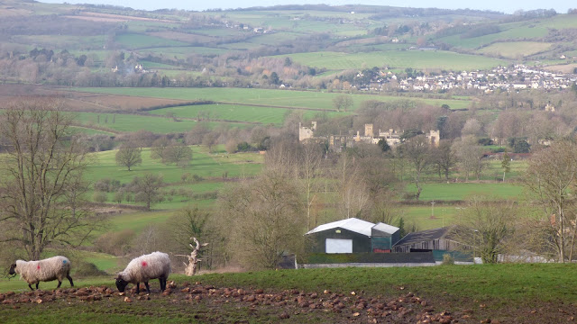 Overlooking Sudeley Castle and Winchcombe - Cotswolds Road Trip