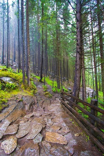 Sentiero per le Cascate Riva