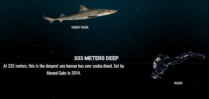 Human dive 332M