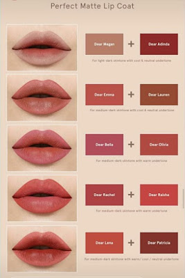 Perfect matte lip Coat