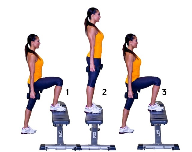 Quad Exercises