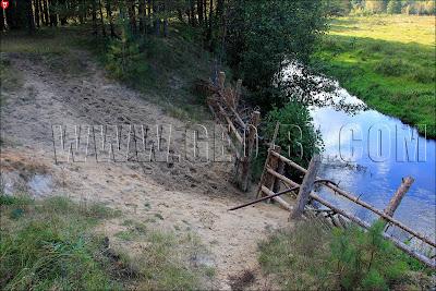 Налибокская пуща. Конский водопой на реке Усса