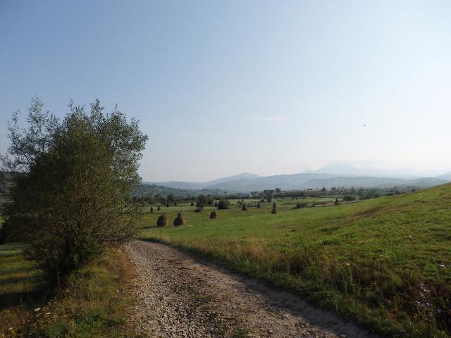 Górska łąka w północnej Rumunii. Miejsce ma klimat