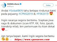 Siap-siap, Seleksi PPPK dan CPNS 2019 Segera Dibuka, Simak Jadwalnya!