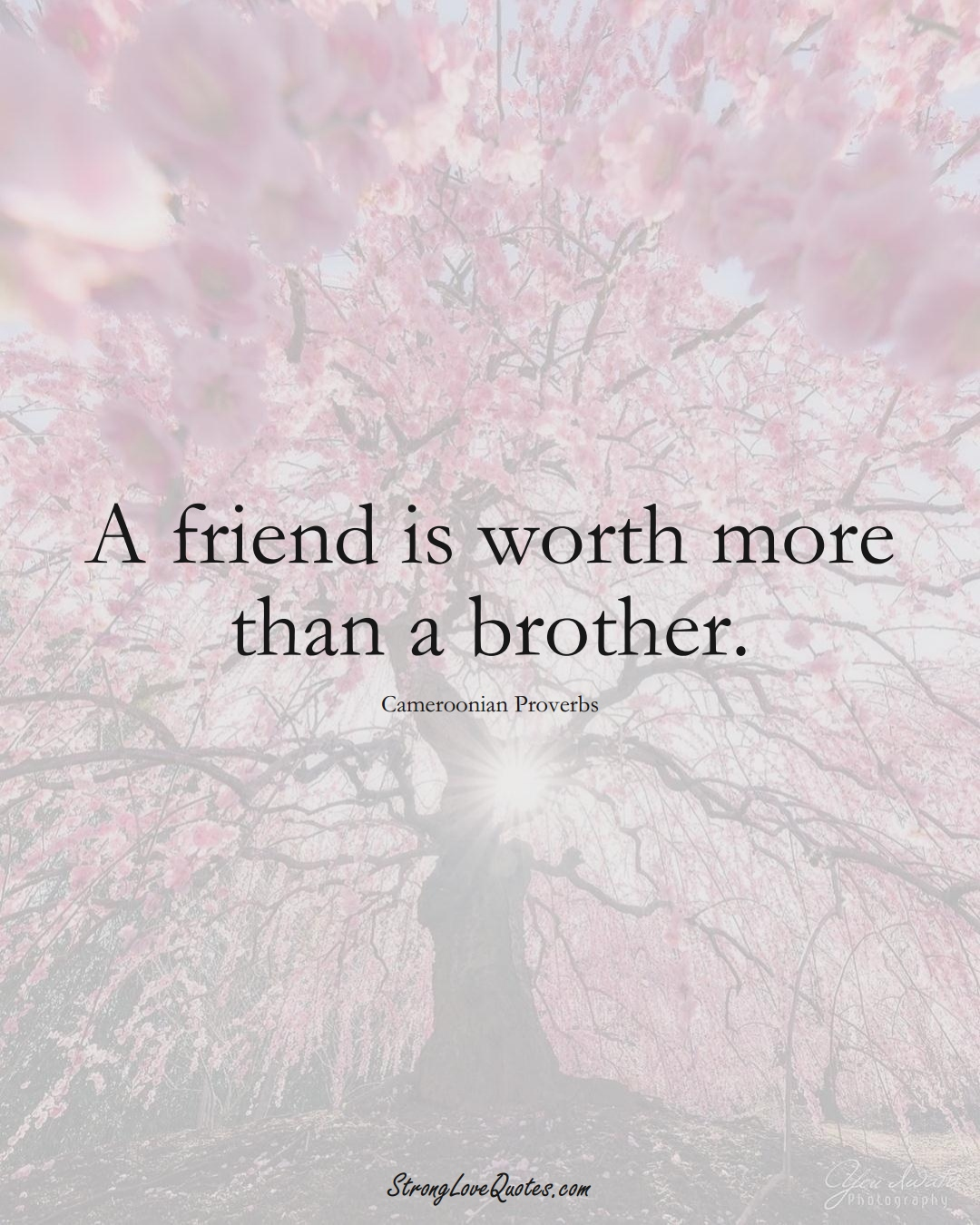 A friend is worth more than a brother. (Cameroonian Sayings);  #AfricanSayings