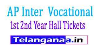 AP Inter (Vocational) 1st 2nd Year Hall Tickets