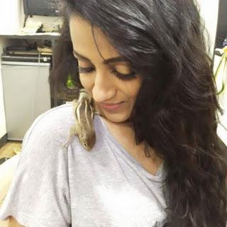 Trisha Krishnan Sexy Photos in  T-Shirt