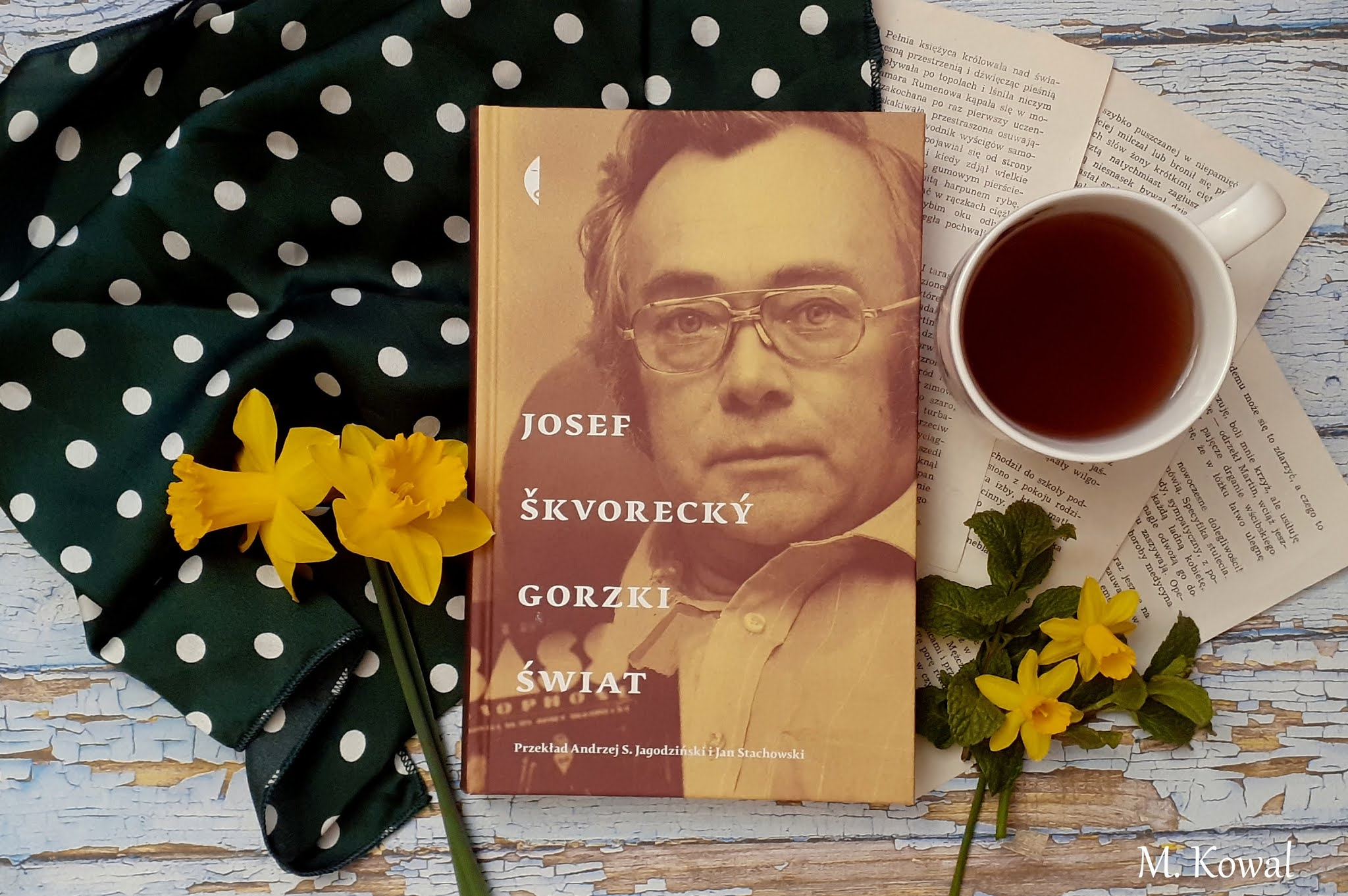 "książka ""Gorzki świat"" Josef Škvorecki"