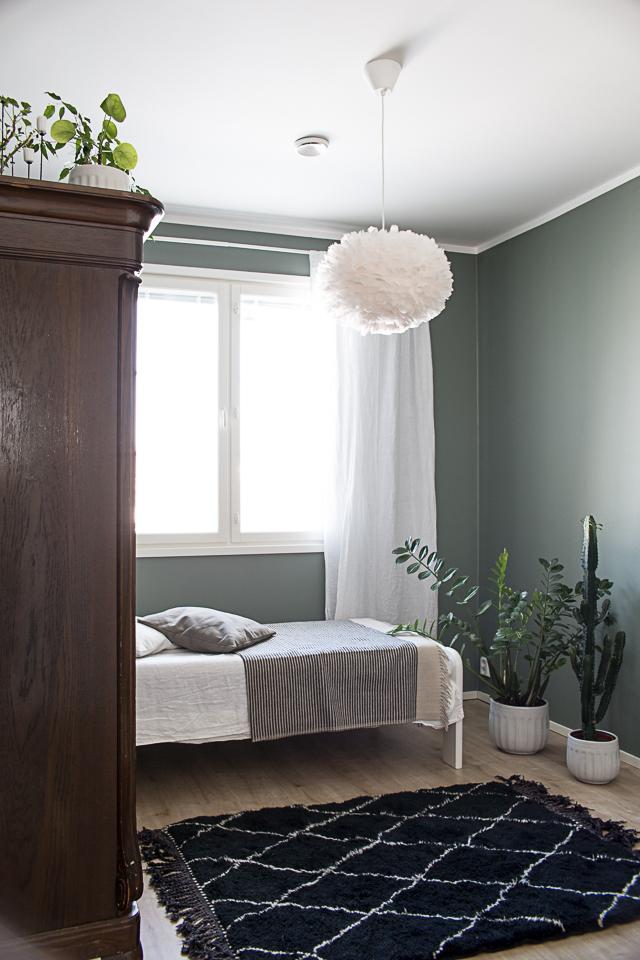 beni ouarain matto, kaktus, vihertävät seinät, vierashuone