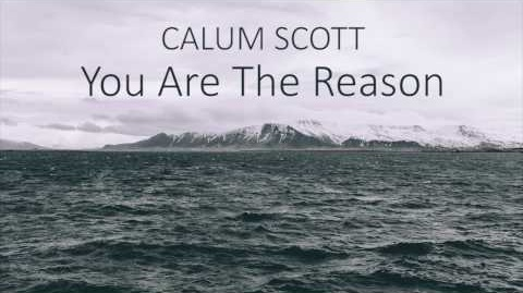 'You Are The Reason' - Calum Scott