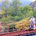 秋田大館/小坂鐵道鐵軌單車體驗 在廢棄鐵軌上騎腳踏車 享受群山圍繞的芬多精