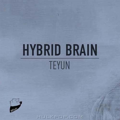 TEYUN – HYBRID BRAIN