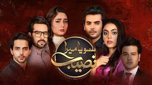 Apna TV Zone: HUM Dramas Watch |GEO | ARY | Hum | Express