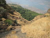 Shivaji's Ladder