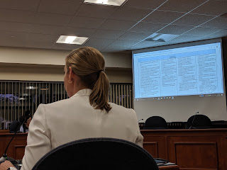 Superintendent Sara Ahern reviewing the update District Improvement Plan