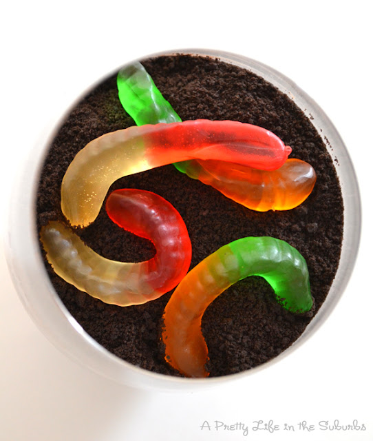 Worms and Dirt Dessert