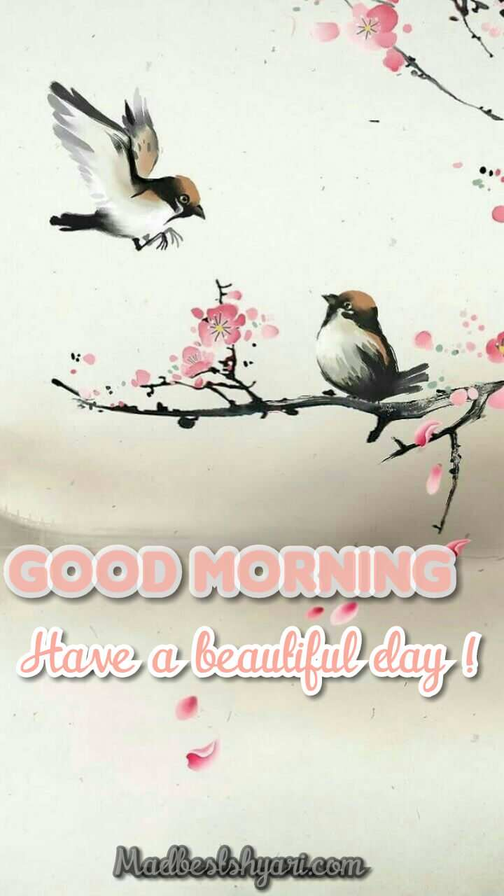 good morning images With Bird
