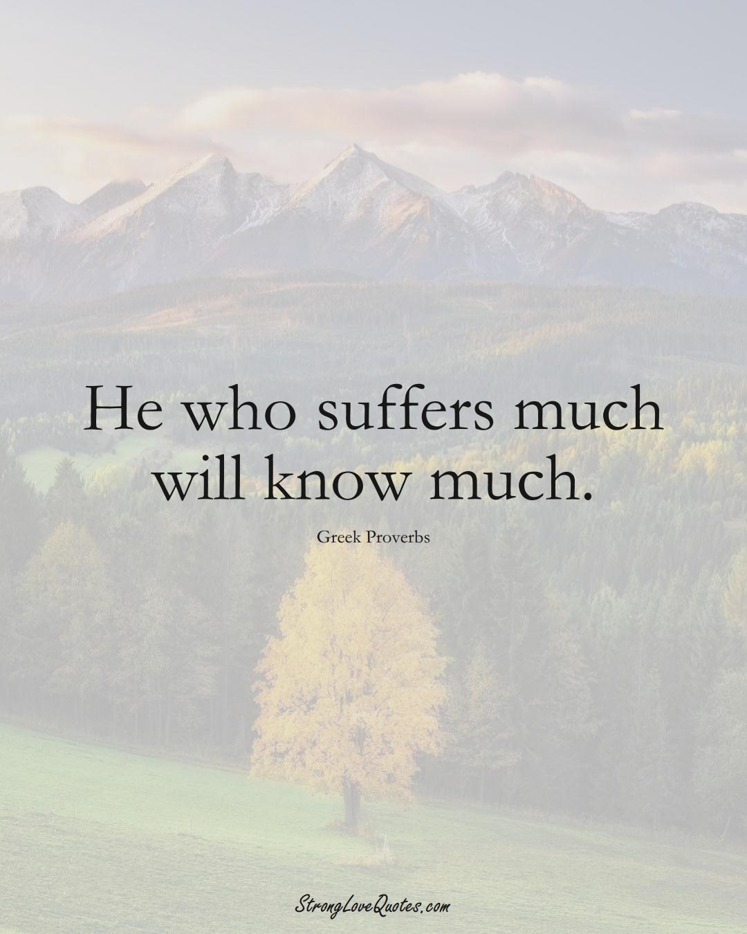 He who suffers much will know much. (Greek Sayings);  #EuropeanSayings