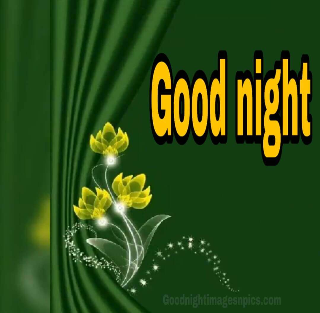 Lovely Images Of good Night For Lover