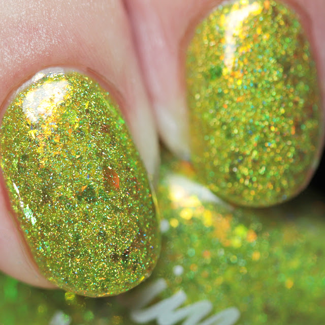 KBShimmer Something to Taco 'Bout