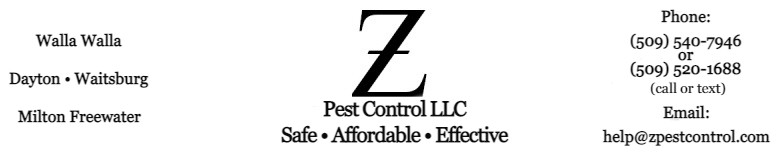 Ants, Spiders, Mice, Weeds - Z Pest Control LLC, Walla Walla, WA
