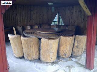 Grup de 14 scaune
