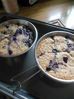 Individual Blueberry Cakes, a small batch recipe!