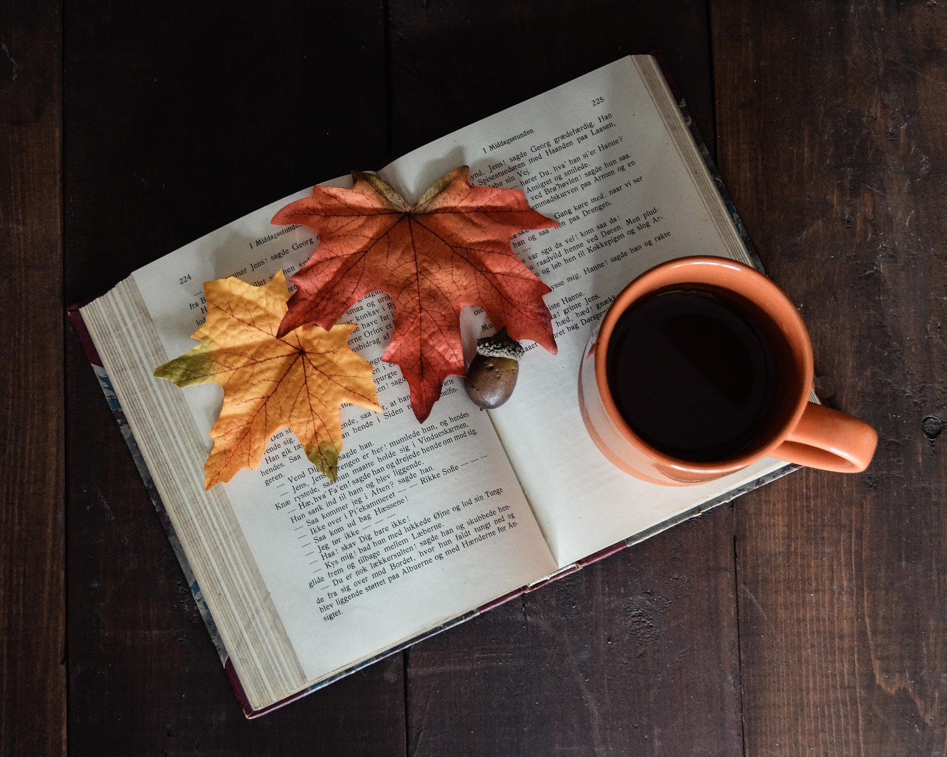 Leituras de outono - 2020