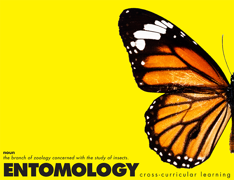 E is for Explore!: Entomology: Cross-Curricular Learning