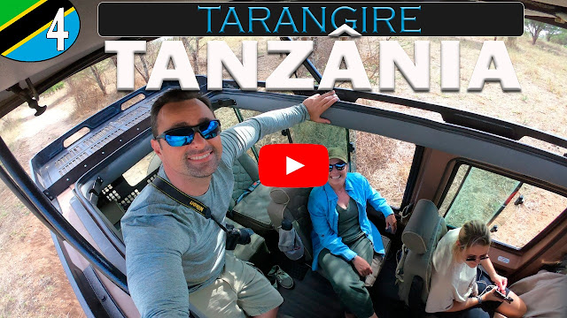 Tarangire