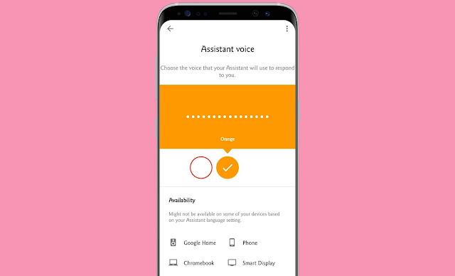 Customize The Google Assistant Voice