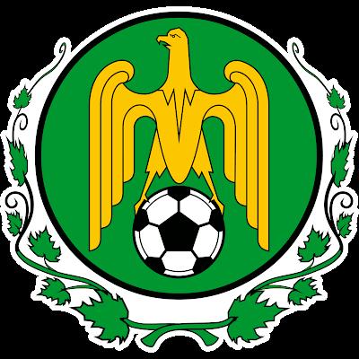FOTBAL CLUB CODRU LOZOVA