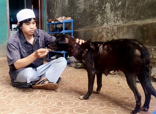 Saat Santri NU Menghebohkan Media Sosial Karena Menyuapi Anjing Terlantar, Ini Cerita Lengkapnya