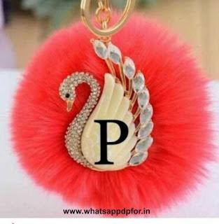 p-name-whatsapp-dp