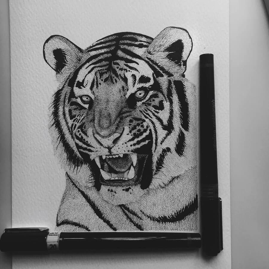 09-Tiger-roaring-Paige-Bates-www-designstack-co